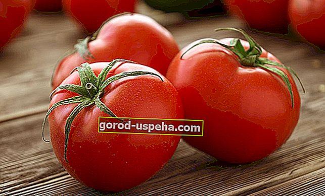 7 savjeta za čuvanje rajčice tijekom cijele zime