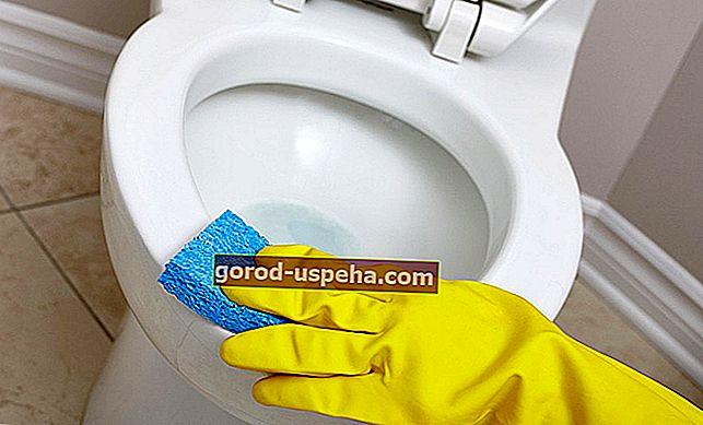 5 nasvetov za popolno čiščenje stranišča