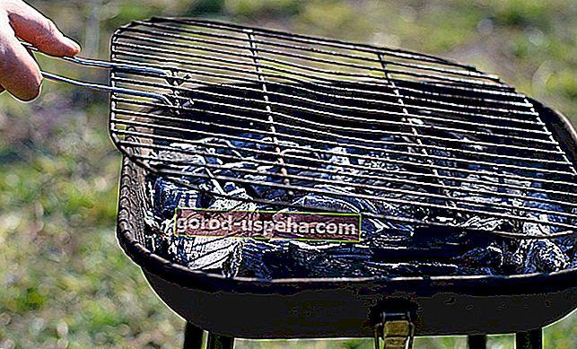 Pravi proizvodi za čišćenje roštilja